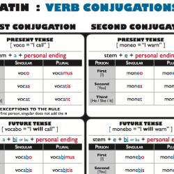 Latin Verbs
