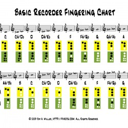 recorder_chart
