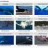 Excellent Animal and Marine Life Videos
